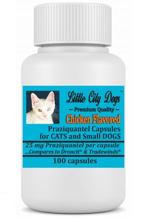 HEARTWORMS 101 – Little City Dogs