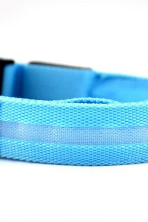 LED dog collar - blue