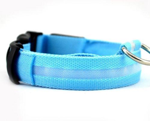 LED dog collar - blue