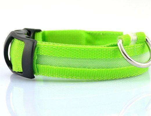 LED dog collar - green