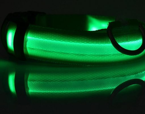 LED dog collar - green