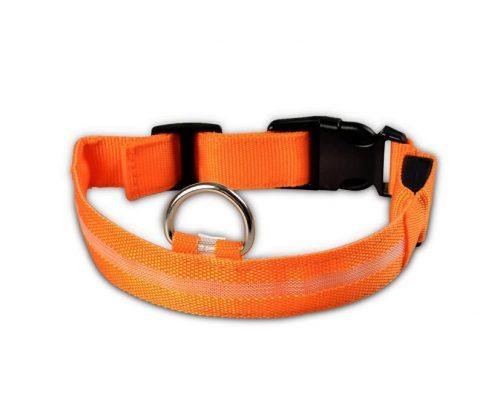 LED dog collar - orange