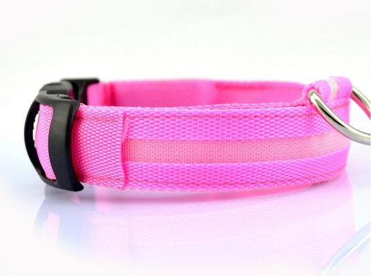 LED dog collar - pink