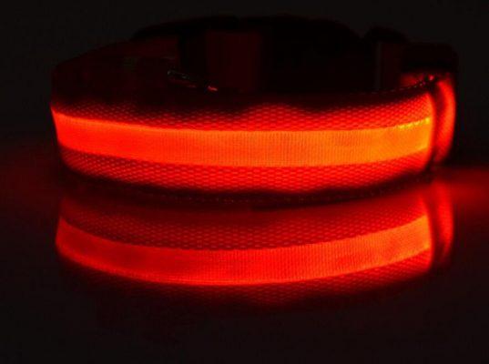LED dog collar - red