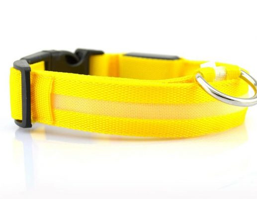 LED dog collar - yellow